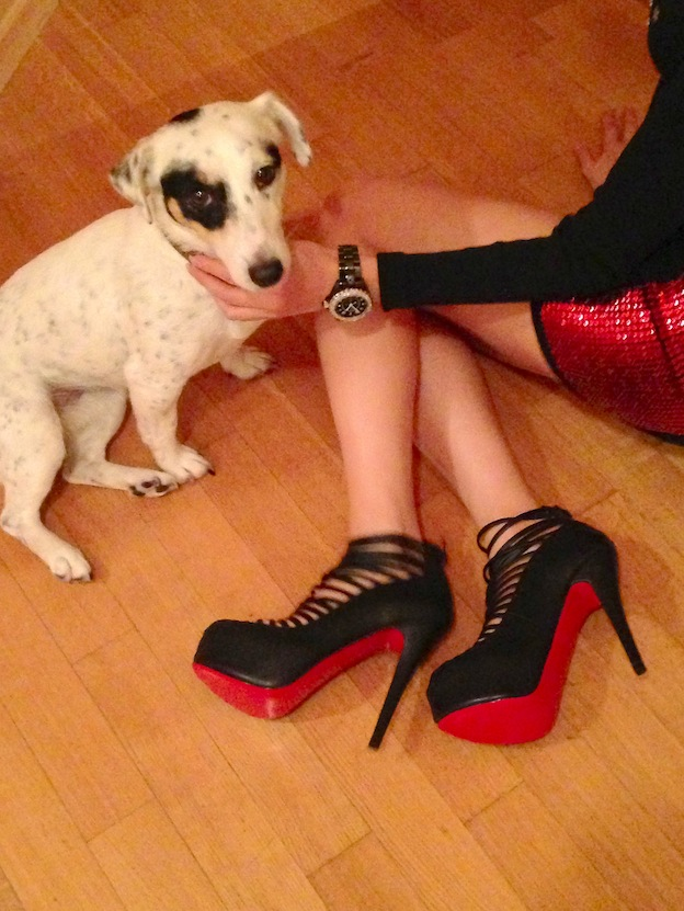 dog_loves_christian_louboutin_shoes