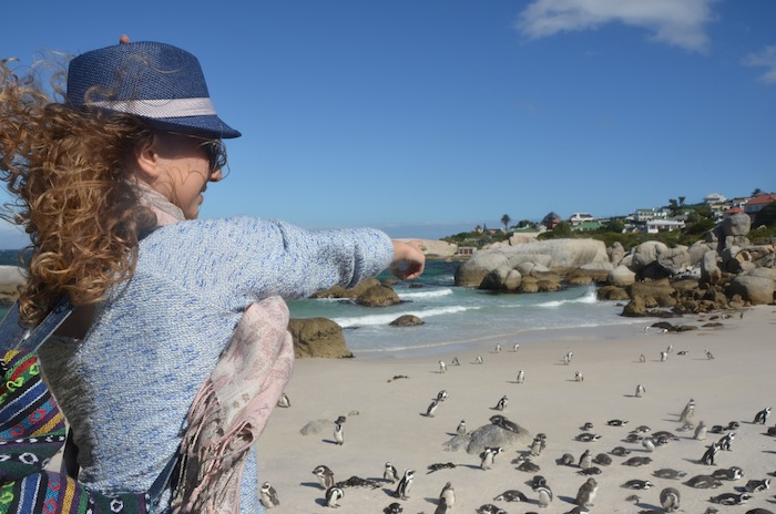 Discover Boulders Beach - home of the African penguins 01