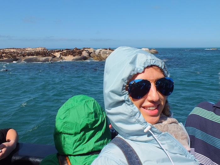 discovering sea lions island 01