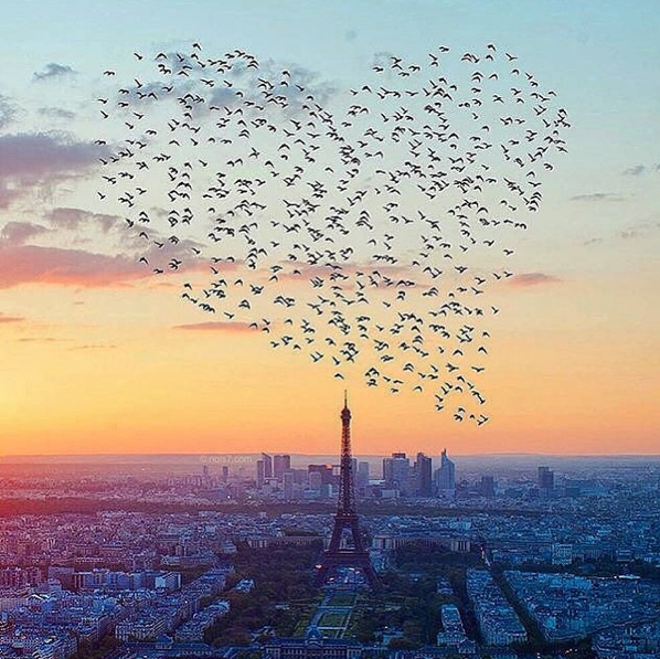 paris-je-t-aime-j-adore-paris