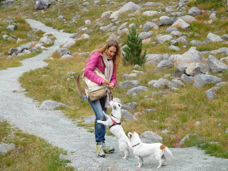 morteratsch-glacier-engadina-mountain-girls-jack-russells-09