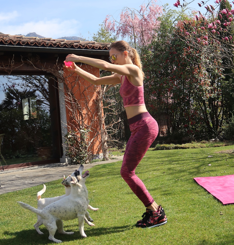 outdoor-fitness-with-dog-jack-russell-10