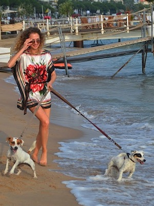 outfit on the beach with my Jack Russells